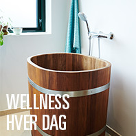wellness hver dag 1